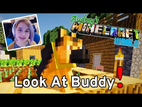 Audrey's MINECRAFT SURVIVAL World   Buddy Has a New Look!