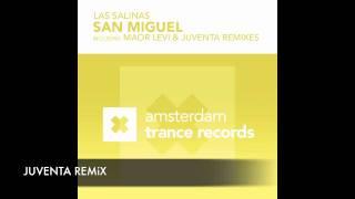 Las Salinas - San Miguel (Maor Levi Remix)
