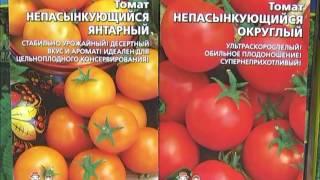 видео Что такое штамбовые томаты