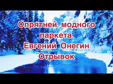Опрятней модного паркета... отрывок из Евгения Онегина А.С. Пушкин