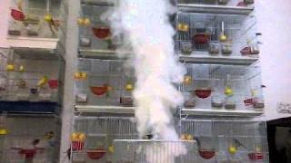 التخلص من الفاش بدواء فعال Pro-smoke