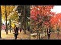 Autumn in South Korea (2017)