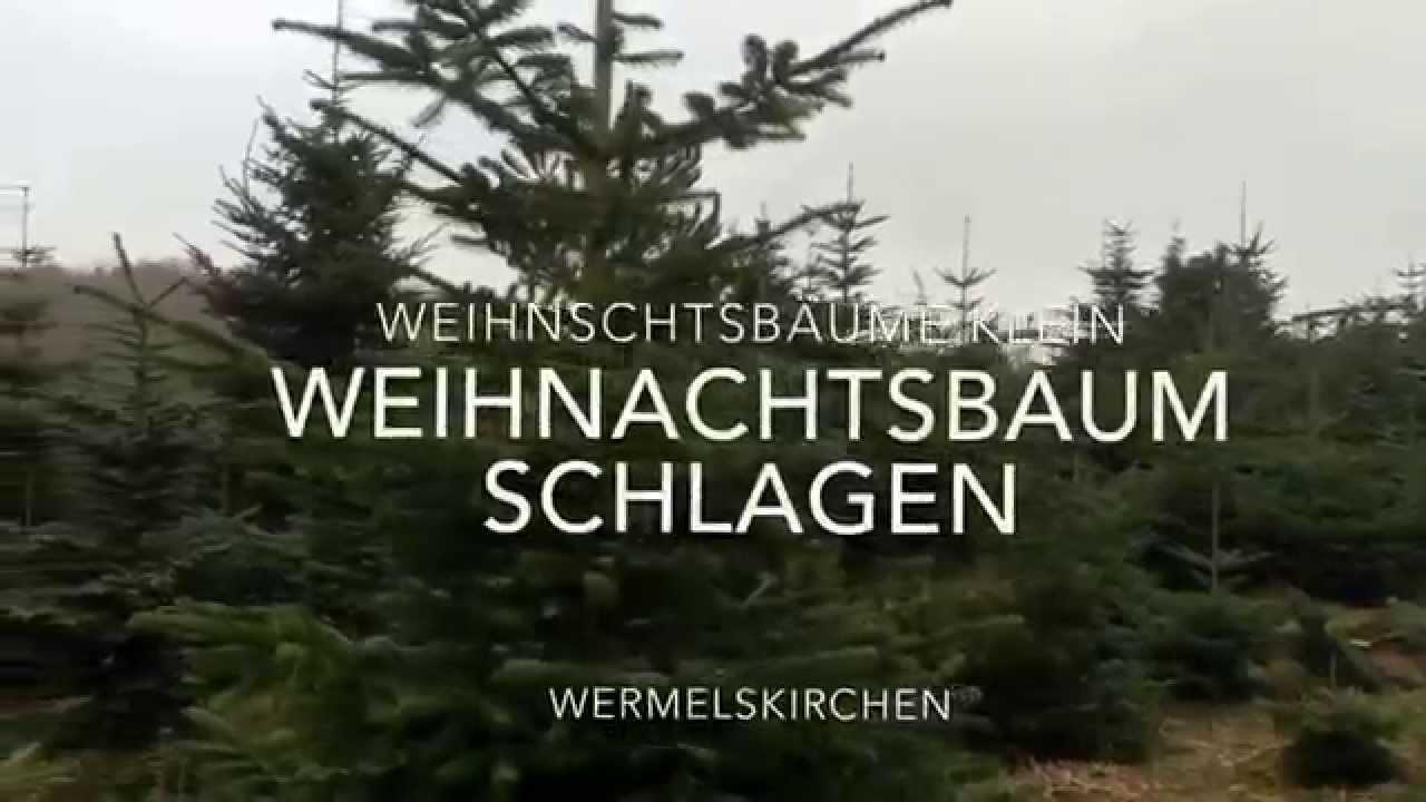 Weihnachtsbaumschlagen leipzig 2019