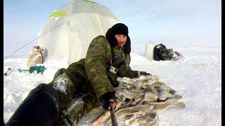 Рыбалка на Рыбинском водохранилище Двое суток на льду Ловлю налима