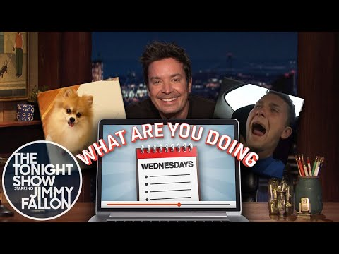 What Are You Doing Wednesdays: Dog Diet Challenge, Screaming Car Passengers