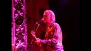 Robyn Hitchcock interview from November 2006 Thumbnail