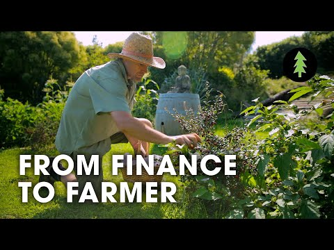 Man Quits Job in Finance to Create Incredible Permaculture Garden | From Finance to Farmer