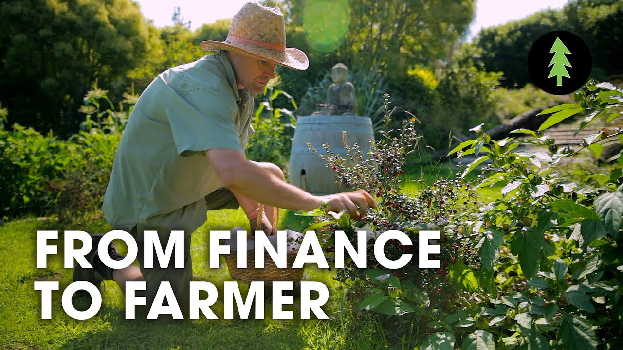 Man Quits Job in Finance to Grow Food and Develop Permaculture Food Forest | From Finance to Farmer