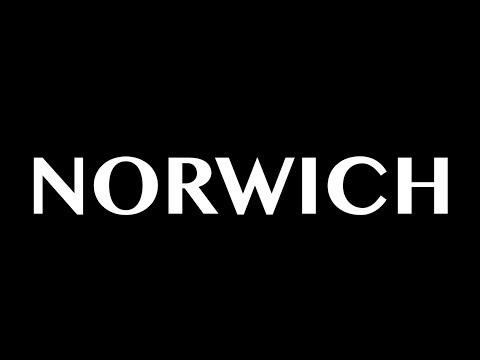Norwich - BUSH Tour UK