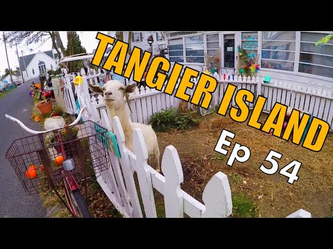 What's on Tangier Island?! | Sailing Wisdom Ep 54