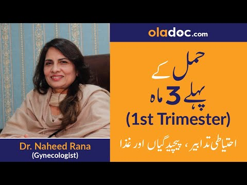 First Trimester of Pregnancy Tips (Urdu/Hindi) | Hamal ke pehle teen maah | Top Gynecologist
