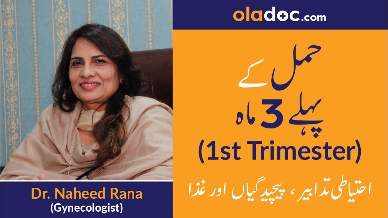 First Trimester Of Pregnancy Tips Urdu Hindi Hamal Ke Pehle Teen Maah Top Gynecologist Sm1 Youtube