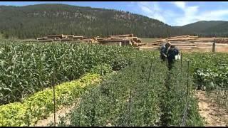 Gottes stille Rebellen - Die Amish in den Rocky Mountains (1)