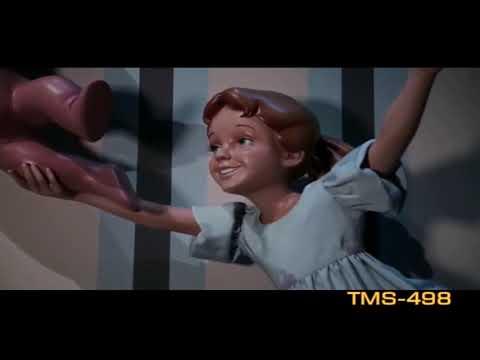 Youtube Peter Pan's Flight