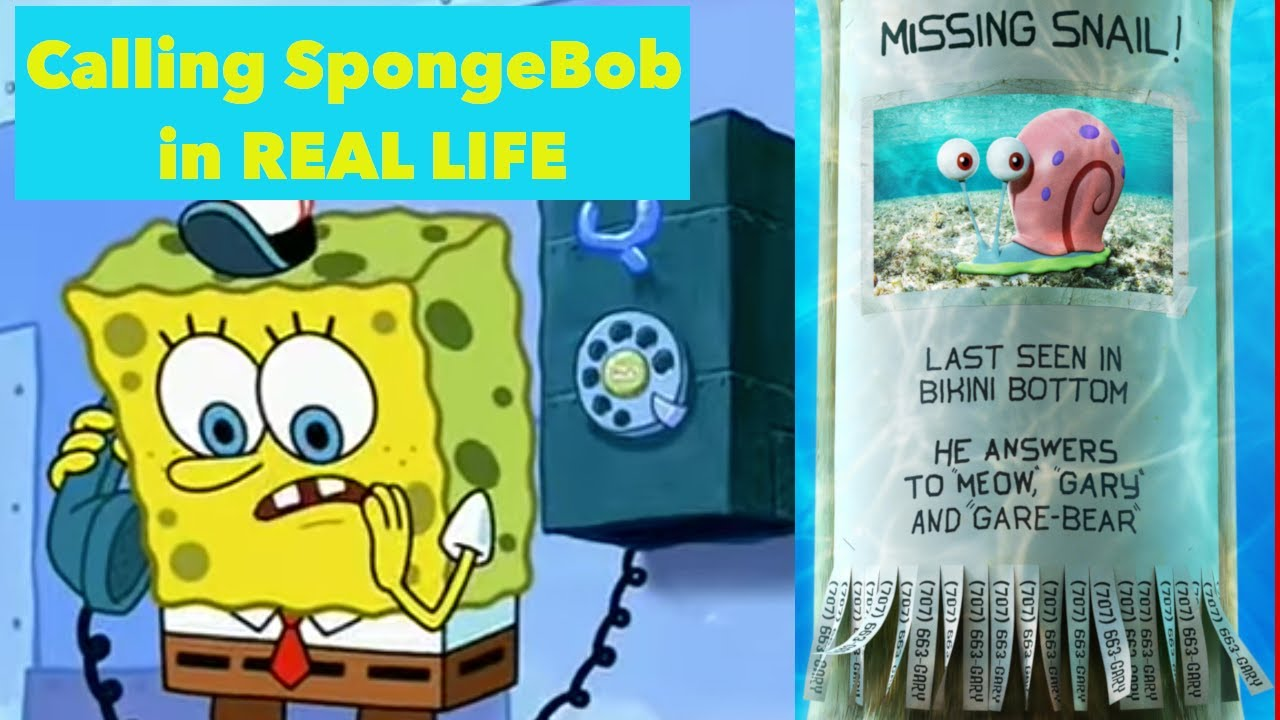 What Happens When You Call SpongeBob? Where's Gary Real ...