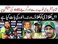 Shahid Afridi talk about pak team selection vs South Africa odi series 2019