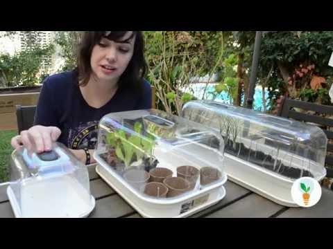 Como hacer un semillero gratissss huerto urbano - Mini invernadero casero ...
