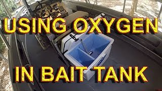 BEST OXYGEN BAIT TANK SYSTEM