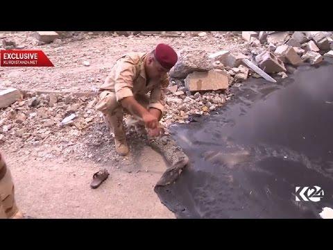 EXCLUSIVE Kurdistan24: Black oil covers the town of Qayyarah