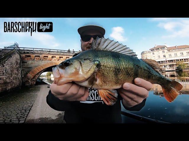Einmal alles bitte!? Dicke Barsche, Zander, Rapfen, Hecht und Wels beim Streetfishing in Metz