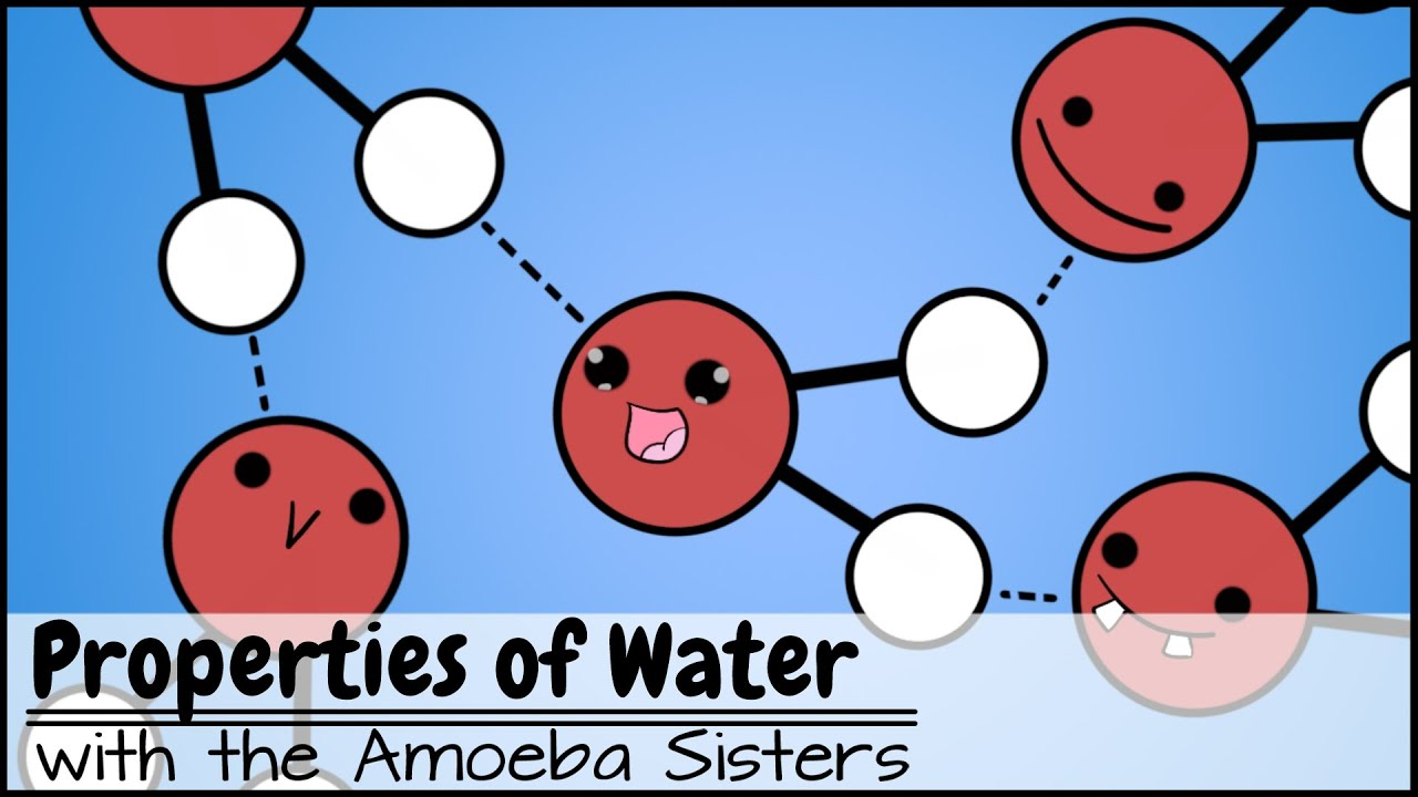 Properties of Water - YouTube