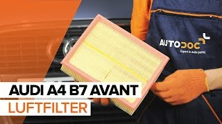 Alternator SKODA ausbauen - Video-Tutorials