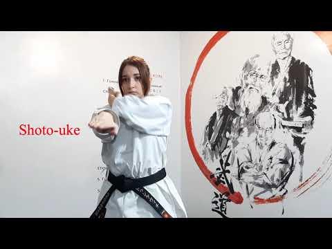 Школа традиционного каратэ-до