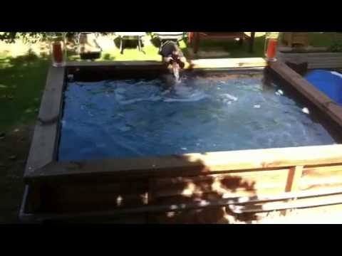 Piscine Et Spa En Bois  Youtube