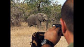 Kumakonda African Expeditions | البحرين VLIP LV