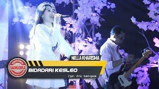 Nella Kharisma - Bidadari Kesleo  Melon Music Version