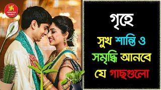 জেনে নিন বাস্তুমতে গৃহে সুখ শান্তি ও সমৃদ্ধির জন্য শুভ আর অশুভ গাছ কোনগুলি? Bangla Motivational