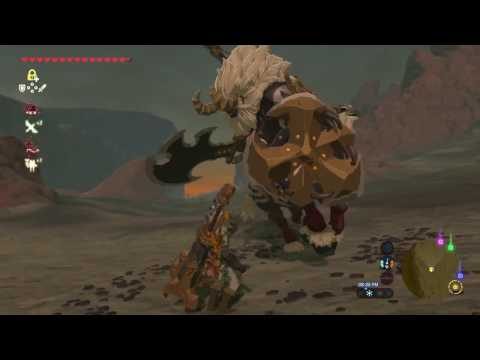 How To Kill A Lynel (Best Method)