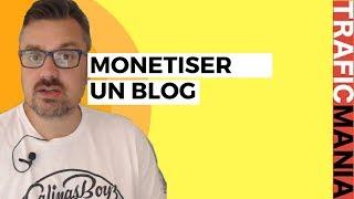 Monétiser un blog: 80 000 inscrits, 50% des ventes