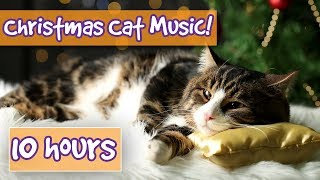 Festive Christmas Therapy Music for Cats! Soothing Christmas Holiday Music for Anxious Cats! 🐱 🎅🏻