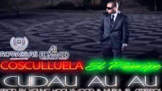 Cosculluela Ft.Alexis & Fido & Daddy Yankee - Cuidau Au Au (Official Remix) REGGAETON NUEVO