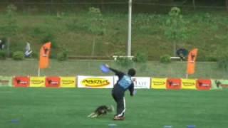 DISC DOG FREESTYLE AWI JAPAN SUPER FINAL 2009