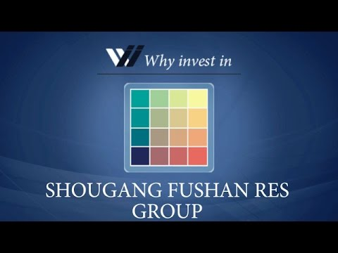 Shougang Fushan Res Group - Why invest in 2015