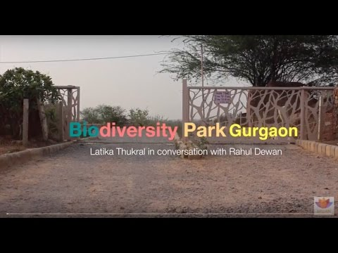 Aravalli Biodiversity Park Gurgaon