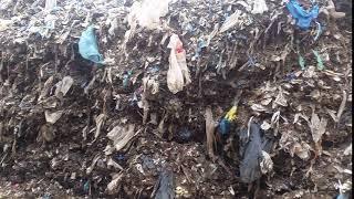 Γιγαντώνεται η περιβαλλοντική πληγή στη Μαραθόλακκα, σύμφωνα με τον Μάκαρη