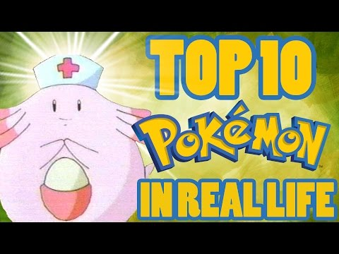 Top 10 Best/Useful Pokemon In Real Life (Ft. TheAuraGuardian)