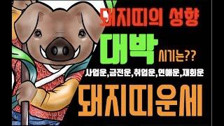 [스토리박스:12간지 돼지띠(해)의 성향]