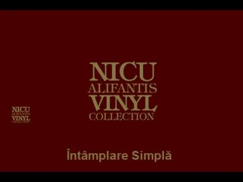 Nicu Alifantis    Intamplare simpla