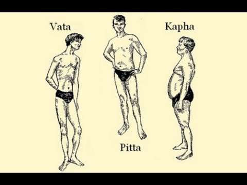 The Ayurvedic Body Types and Their Characteristics (Vata, Pitta, Kapha)