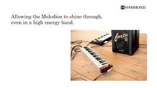 Hammond Electric / Acoustic 44 keys Melodion PRO-44Hv2 & PRO-44HPv2