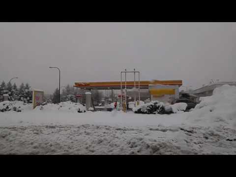 Snow Falling in Burnaby, British Columbia #2