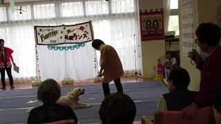 コニードッグダンス、施設で初めてデビュー.