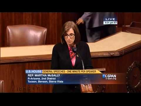 Rep. McSally talks about her jobs bill on House floor