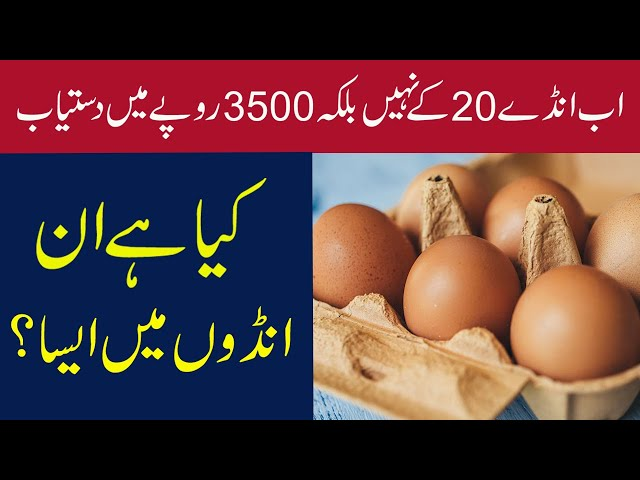 Pakistan's Most Expensive Eggs Which Cost 3500 Rupees
