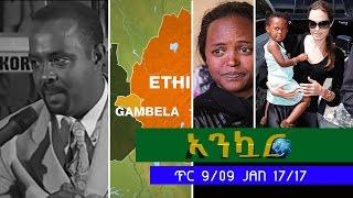 Ankuar Ethiopian Daily News Digest | January 17, 2017