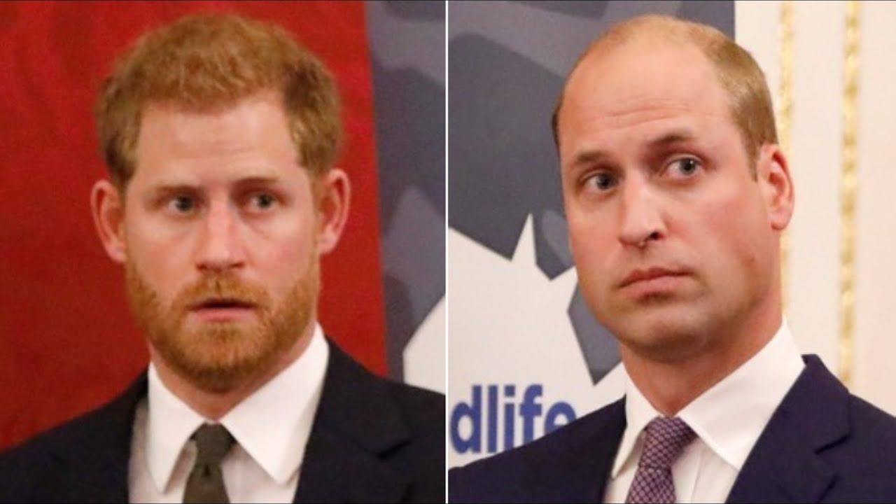 William Y Harry Nunca Fueron Los Mismos Luego De La Muerte De Diana